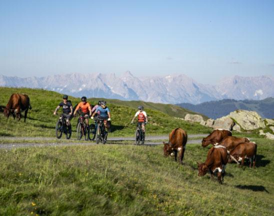 Radfahren und Mountainbiken in Saalbachs Bergwelt, Action und Spaß für die ganze Famile - Pension Lederergütl